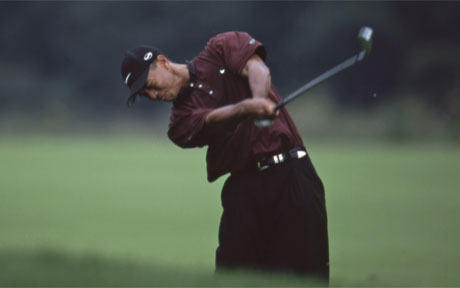 Strokes of Genius: Tiger Woods 2000
