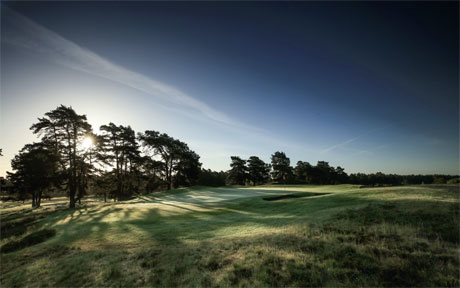 Sunningdale - New Course